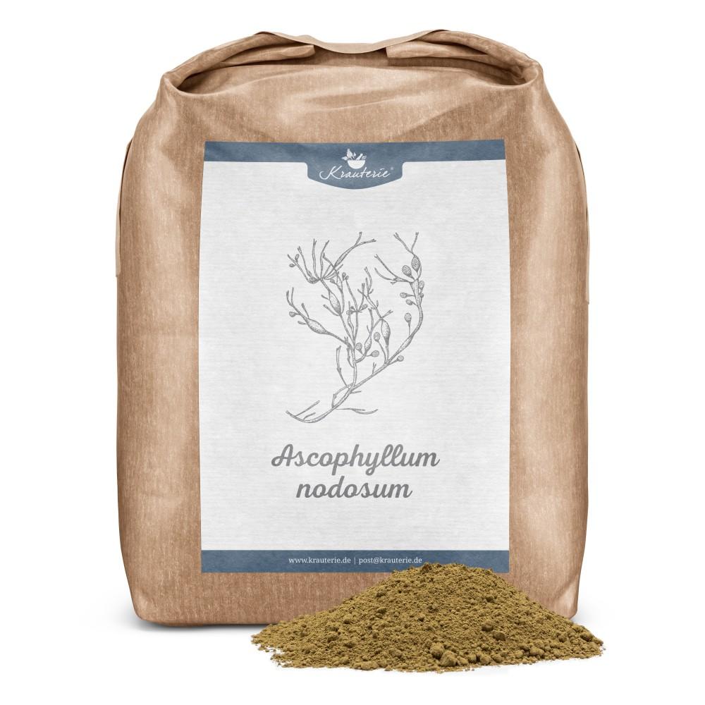 Ascophyllum nodosum für Pferde Pulver 1 kg Verpackung