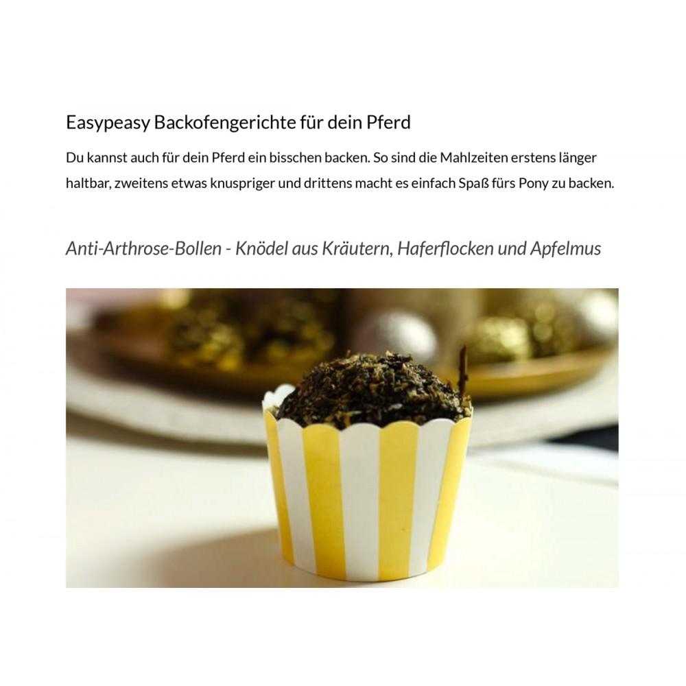 "E-Book ""Easy Cooking für Pferde"""