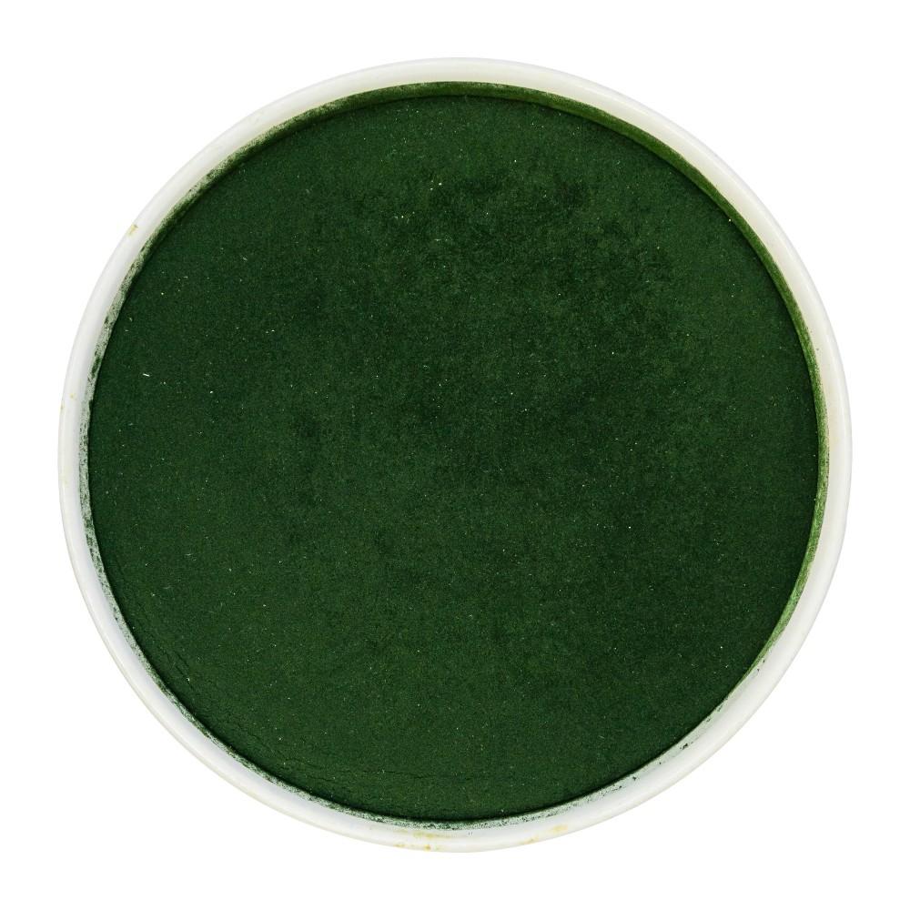 Spirulina Alge für Hunde