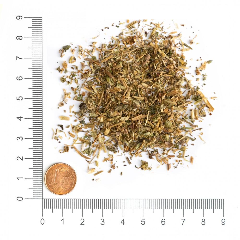 Krauterie Vogelmiere / Vogelmierkraut (Stellaria media) geschnitten Detail