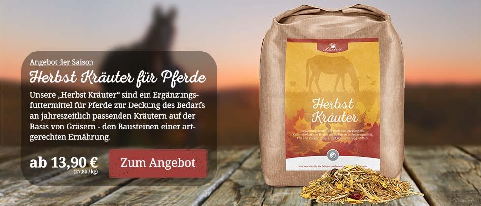 Angebot Herbst Kräuter für Pferde